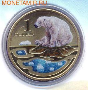 Серия «Полярные животные». Белый медведь. Арт: 000042842858 (фото)