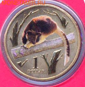 Серия «Животные зоопарка. Древесные кенгуру Гудфеллоу » (фото)