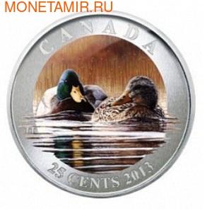 Канада 25 центов 2013. Утка-Кряква (фото)