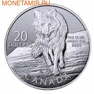 Канада 20 долларов 2013. Волк