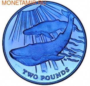 Синий кит. Арт: 000087642789 (фото)
