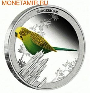 Австралия 50 центов 2013. «Волнистый попугайчик» – серия «Птицы Австралии».Арт.000172742833 (фото)
