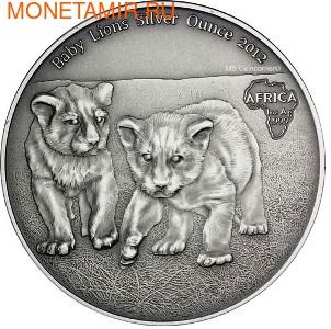 Конго 1000 франков 2012.Детеныши льва (львята).Арт.000357842422/60 (фото)
