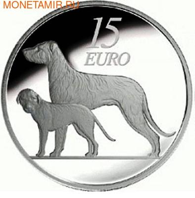Ирландия 15 евро 2012. Ирландский волкодав . Ирландия 15 евро 2012. (фото)