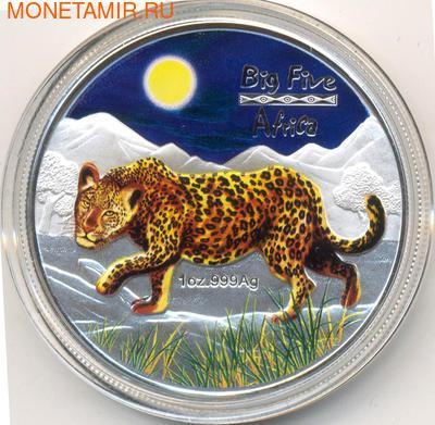Большая Африканская пятерка- Леопард. Арт: 181033820 (фото)