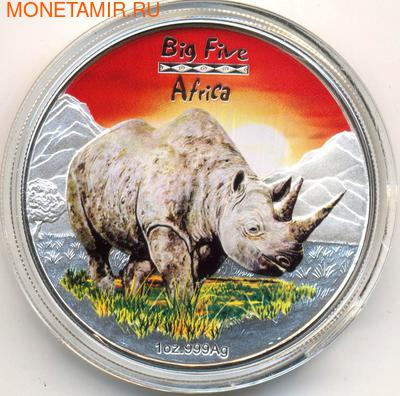 Большая Африканская пятерка- Носорог. Арт: 181033820 (фото)