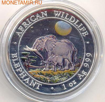 Слоны. Сомали 100 шиллингов 2011. (фото)