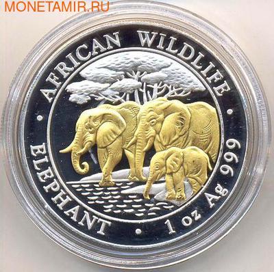 Слоны. Сомали 100 шиллингов 2013. (позолота) (фото)