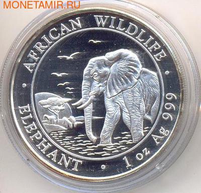 Слон. Сомали 100 шиллингов 2010. (фото)