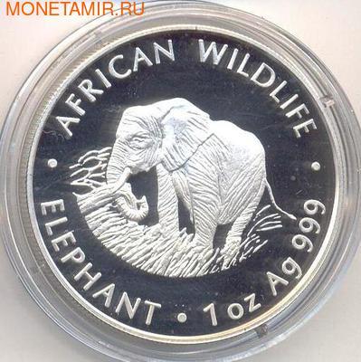Слон. Замбия 5000 квачей 2000. (фото)