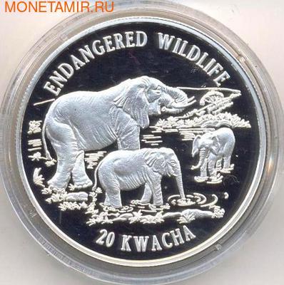 Слоны. Малави 20 квача 1996. (фото)