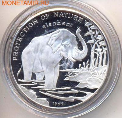 Слон. Лаос 50 кип 1993. (фото)