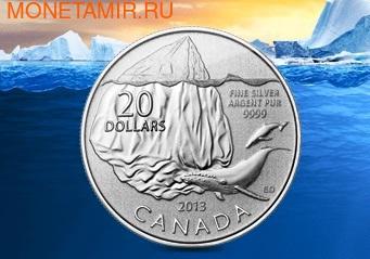 Канада 20 долларов 2013. Кит (фото)