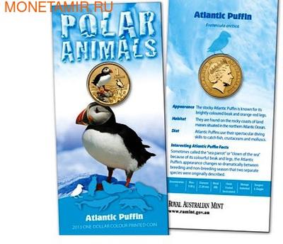 Австралия 1 доллар 2013. Атлантический пуффин (фото)