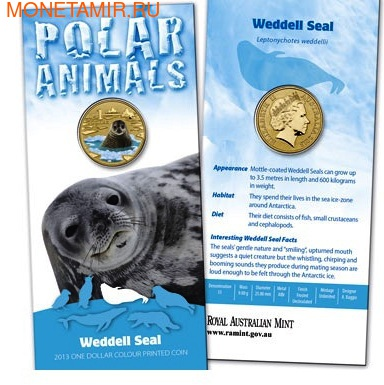 Австралия 1 доллар 2013. Тюлень Уэдделла (фото)