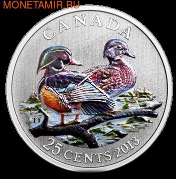 Канада 25 центов 2013. Древесная утка (фото)