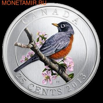 Канада 25 центов 2013. Странствующий дрозд (фото)