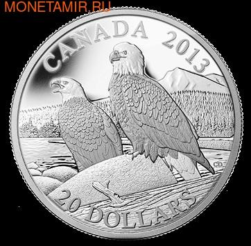 Канада 20 долларов 2013. Белоголовые орланы (фото)