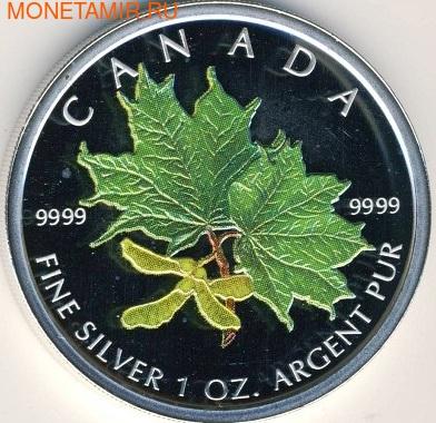 Канада 5 долларов 2002. Зеленый кленовый лист.Арт.000214143800 (фото)
