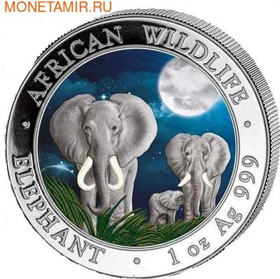 Сомали 100 шиллингов 2014. Слоны. (фото)