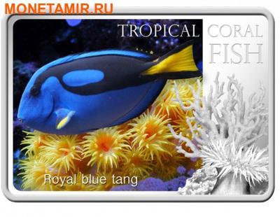 Ниуэ 1 доллар 2013. «Голубой Хирург» серия «Тропические коралловые рыбы».Арт.000322246463 (фото)