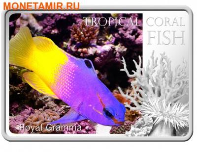 Ниуэ 1 доллар 2013. «Королевская Грамма» серия «Тропические коралловые рыбы».Арт.000322246466 (фото)