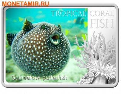 Ниуэ 1 доллар 2013. «Белоточечный аротрон» серия «Тропические коралловые рыбы».Арт.000322246469 (фото)