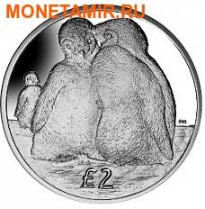Британские Антарктические Территории 2 фунта 2013. «Птенцы Императорских пингвинов».Арт.000032047179 (фото)