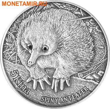 Папуа Новая Гвинея 5 кина 2012. «Колючий муравьед - Ехидна».Арт.000314546554