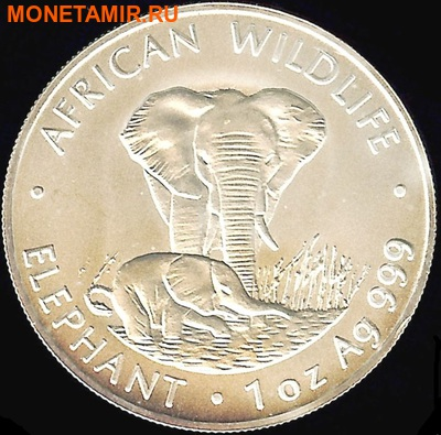 Замбия 4000 квач 1998. «Слон с детенышем» серия «Дикая Африка».Арт.000120147493 (фото)