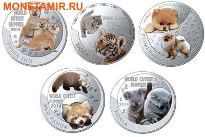 Ниуэ 1 доллар 2014. Набор 5 монет. Мир симпатичных щенков – Шиба-Ину, Тигр, Померанский шпиц, Красная панда, Коала. Арт.000247747799 (фото)