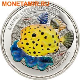 Палау 5 долларов 2014.Рыба – Желтый пятнистый кубик – Защита морской жизни.000225448854/60 (фото)