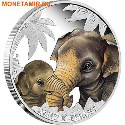 Тувалу 50 центов 2014.Слон серия Материнская любовь.Арт.000171448652/60 (фото)