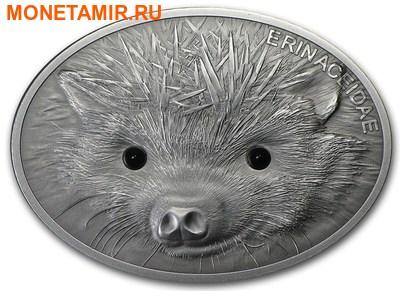 Фиджи 10 долларов 2013.Ежик.Арт.000632550057 (фото)
