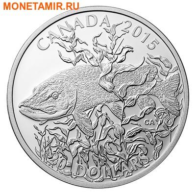 Канада 20 долларов 2015.Североамериканская спортивная рыбалка - Щука. (фото)