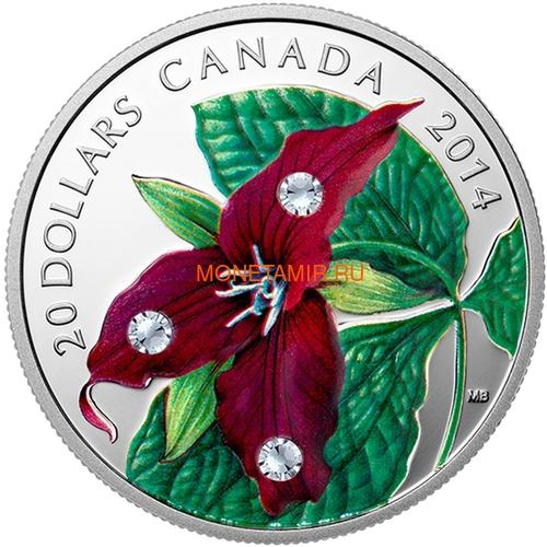 Канада 20 долларов 2014 Цветок Триллиум Прямостоячий Капля Дождя (Canada 20C$ 2014 Flower Trillium Raindrop Swarovski Silver Proof).Арт.000374548352/67 (фото)
