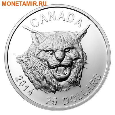 Канада 25 долларов 2014.Рысь (ультра-высокий рельеф). (фото)