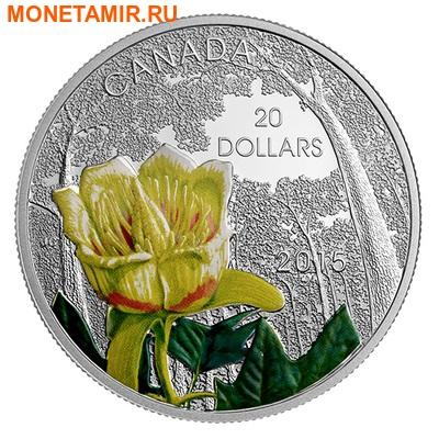 Канада 20 долларов 2015 Цветок Тюльпанное Дерево Лес Канады (Canada 20C$ 2015 Carolinian Tulip-Tree Flower).Арт.000445450355/67 (фото)