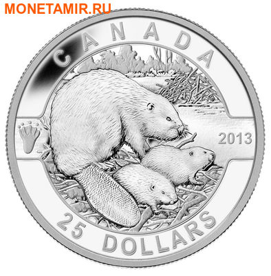 Канада 25 долларов 2013.Бобер с детенышами.Арт.000254442053/60 (фото)