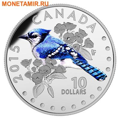 Канада 10 долларов 2015.Голубая Сойка - Красочные певчие птицы Канады. (фото)