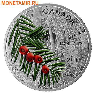 Канада 20 долларов 2015.Тисовое дерево серия Леса Канады.Арт.000407050983/60 (фото)
