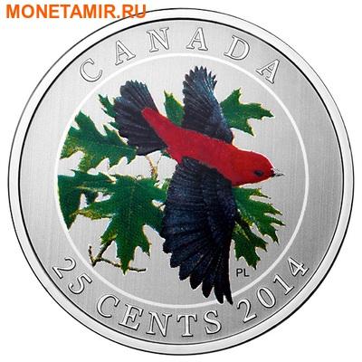 Канада 25 центов 2014.Красно-черная Пиранга.Арт.000172649444 (фото)