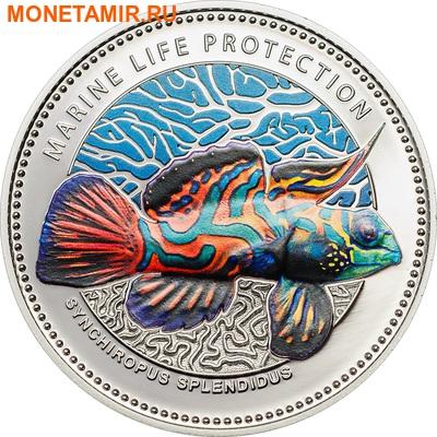 Палау 1 доллар 2013.Рыба Мандаринка (Synchiropus splendidus) – Защита морской жизни.Арт.000065945210/60 (фото)