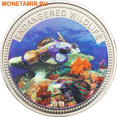 Палау 1 доллар 2011.Рыба Мандарин (Mandarinfish) – Под угрозой исчезновения.Арт.0400280313/60 (фото)