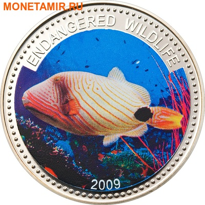 Палау 1 доллар 2009.Рыба Оранжевополосый балистап (Orange-lined Triggerfish) – Под угрозой исчезновения.Арт.60 (фото)