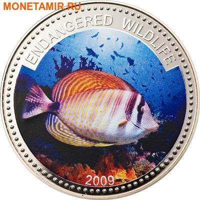 Палау 1 доллар 2009.Рыба Зебрасома (Sailfin Tang) – Под угрозой исчезновения.Арт.60 (фото)