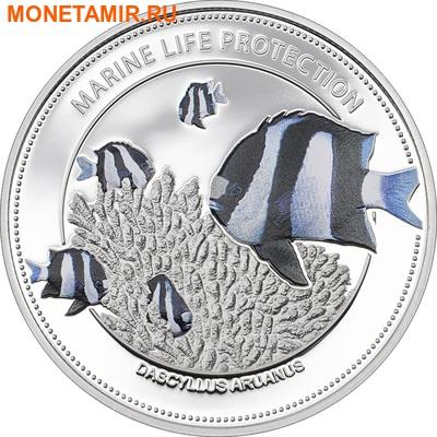 Палау 5 долларов 2015.Рыба Дасцилл зебра белохвостый – Защита морской жизни.Арт.60 (фото)