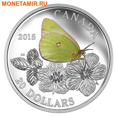 Канада 20 долларов 2015.Бабочка – Гигантская желтушка серия Бабочки Канады.Арт.60 (фото)
