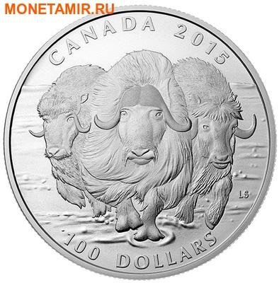 Канада 100 долларов 2015.Овцебык.Арт.60 (фото)