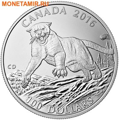 Канада 100 долларов 2016.Пума.Арт.60 (фото)